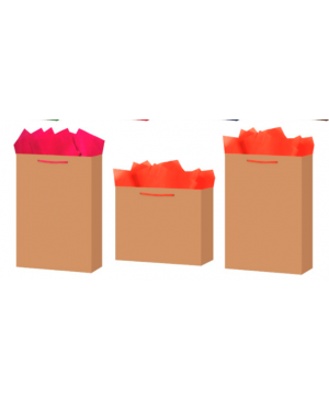 Bolsa de carton kraft shopping B9 Kraft Lisa Shopping